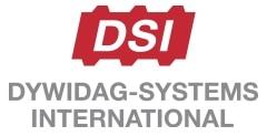 DSI Holding